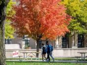 美国大学申请系统Common App:2021年美本学生申请人数正在减少!