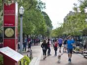 美国波士顿大学24岁中国留学生 惨遭卡车撞死