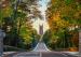 杜克大学ED申请暴涨20%!Top 25美本申请新趋势, 申请增多,录取率降低!