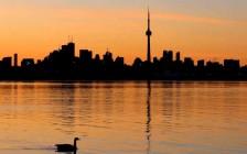 加拿大政府宣布进一步措施支持国际留学生