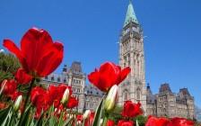 忆加拿大老一代移民生活的酸甜苦辣