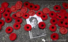 11月11日:今天是加拿大阵亡将士纪念日