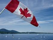 加拿大拟未来三年接收逾百万新移民