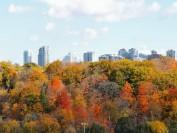 加拿大生活成本最低城市 这里物价便宜工作好找