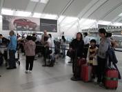 中国人今年来加拿大旅游人次放缓