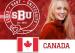 """2021加拿大""""找干爹""""排行榜出炉!多伦多大学又排第一!"""