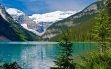 2017年为啥一定要来加拿大?原因在这里