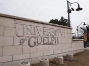 加拿大圭尔夫大学教授当堂侮辱学生 已被停职!