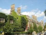 多伦多大学今年拿了多少个排名第一?