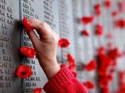 11月11日:罂粟花下的思索-加拿大国殇日有感