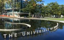温哥华UBC大学Sauder商学院就是要这样申请!