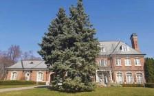 大温哥华地区3月房销火热创单月历史新高 独立屋均价达170万元
