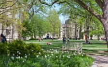 过去50年,普林斯顿大学都在如何挑选学生?