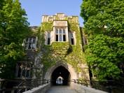 多伦多大学再次面临种族主义和性骚扰指控
