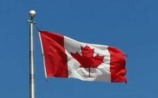 国内申请人最喜欢的几个加拿大移民项目