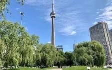 加拿大今年第一季度人口增速快  因移民及留学生推动