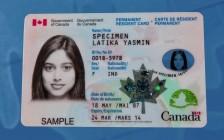 如何保住加拿大枫叶卡(二)