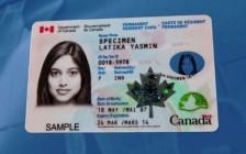 加拿大枫叶卡只能在加国境内申领  境外过期后需要办旅行证入境