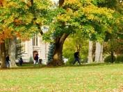 安省圭尔夫大学专业和录取介绍
