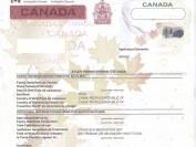 重磅:关于加拿大旅游签证在多伦多转学习签证的要点!不能转成功全退费!