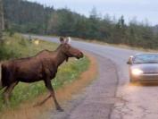 全球最佳野外旅行排行榜,加拿大荣登第四名