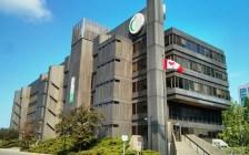多伦多公立学校失修严重:学生教师安全威胁