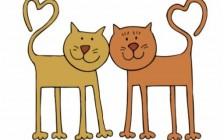 有这样一种优秀的父母:我的美籍亚裔猫爸猫妈