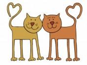 《纽约时报》完全与众不同的父母:我的美籍亚裔猫爸猫妈