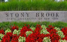 重磅:多伦多苏安高中学生收获美国公立常春藤美誉的纽约州立大学石溪分校offer,这所大学也是杨振宁、丘成桐的母校!