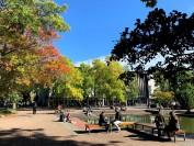 维多利亚大学专家建议开学日推迟一月