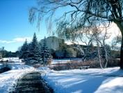 加拿大滑铁卢大学(University of Waterloo)介绍