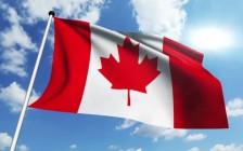 2019年加拿大前25位好工作 第1位原来赚这么多