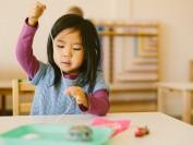 多伦多的私校幼儿教育:除了蒙校还有什么可选择?