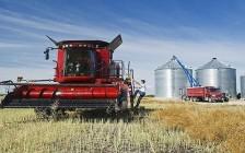 加拿大将试点农业食品移民计划
