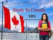 加拿大移民局对中国留学生签证做出重大政策调整
