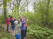 加拿大唯一一个完全户外教学的小学Environmental School 教学都在大自然中进行