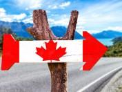 加拿大降移民门槛?3个月发逾2万申请邀约