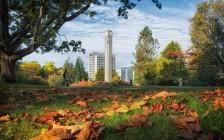 加拿大多伦多大学规划及加拿大多伦多大学申请服务介绍