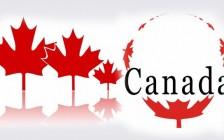 一分钟了解加拿大签证中的SDS、SPP以及GIC