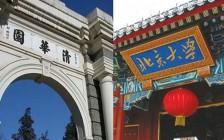 中国大学教育的精致利己主义者,不过是功利的短视狗