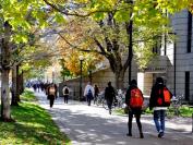 走进加拿大名校-多伦多大学