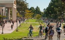 安省各大学全球排名~第一仍是多伦多大学!