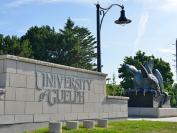 圭尔夫大学硕士预科—通往硕士项目的另外一种选择