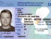 如何一周内把加拿大驾照换成中国驾照?省时又省力,5步搞定!