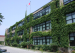 多伦多公立高中—尼尔麦克尼尔中学Neil McNeil High School的中国留学生访谈