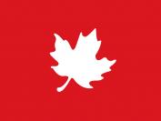 """""""福利之国""""加拿大,儿童福利都有哪些?"""