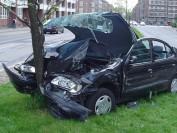 加拿大魁北克15岁小司机驾车撞树 同车男孩2死2伤