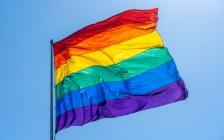 加拿大联邦法院裁定有混合性取向的男同性恋可担保女友移民