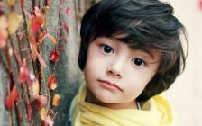 你绝想不到:加拿大华人有多少混血儿?