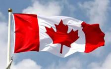 研究:6成留学生通过中介服务申请来加拿大上学